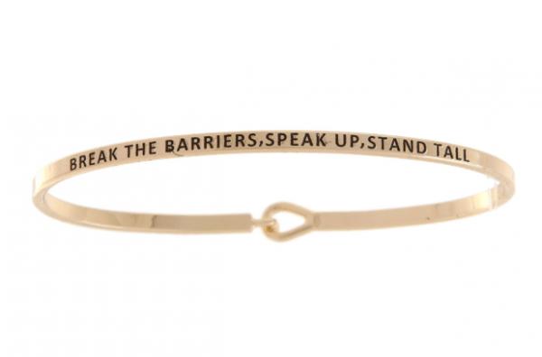 Brake Barriers